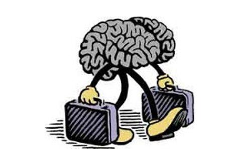 cervelli-in-fuga-001
