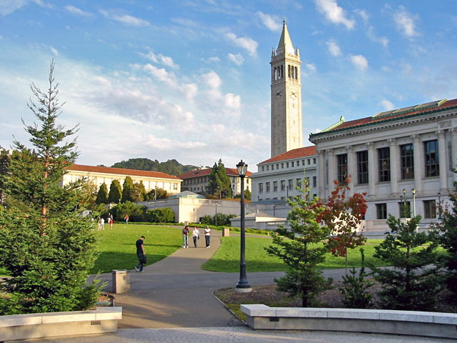 Berkeley_glade_afternoon