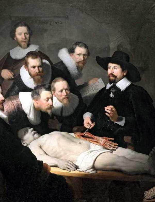 Aula Anatomia Reimbrandt