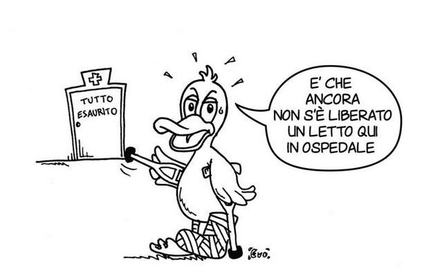 Anatra Zoppa Lame Duck