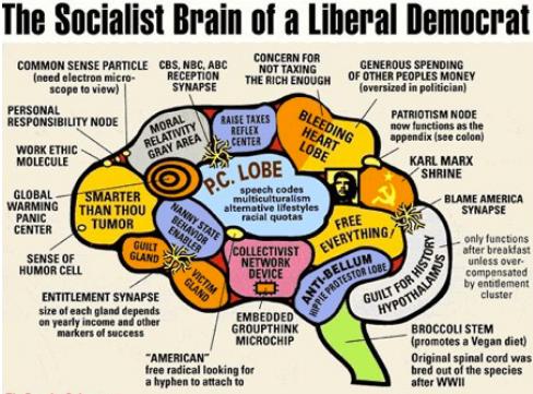 Cervello Liberal Denocratico