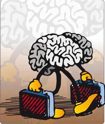 Fuga Cervelli