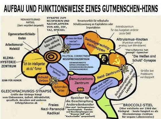 Cervello Tedesco 001