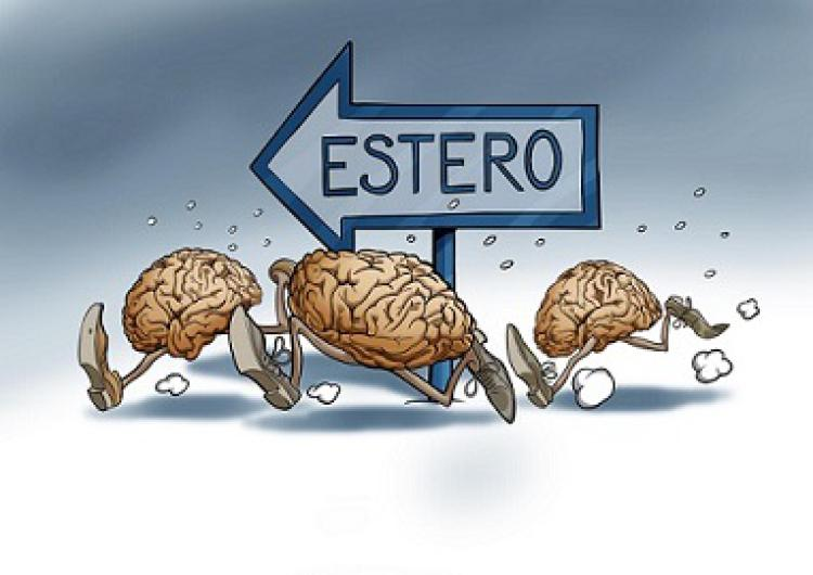Cervelli in Fuga 001