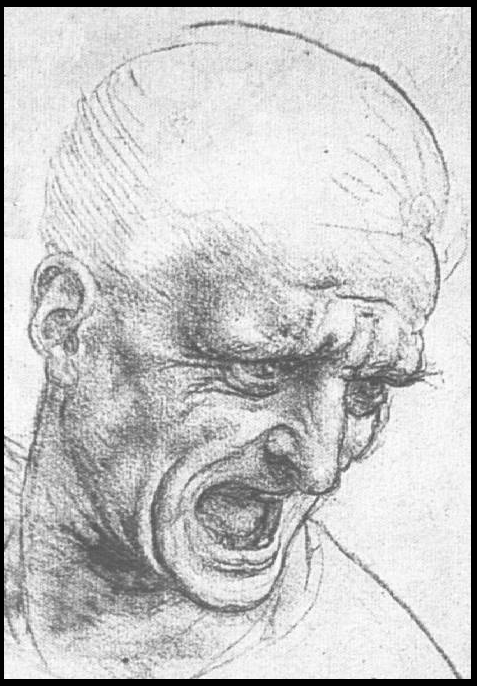 Leonardo. Uomo Irato. 001